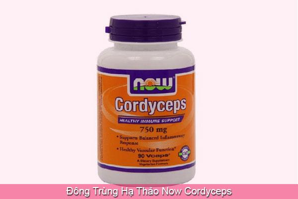 Đông Trùng Hạ Thảo Now Cordyceps